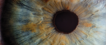 New Paper from MEMs Lab increases accuracy in measurement of eye movements