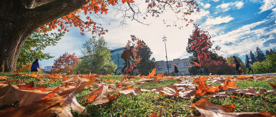 Cyclist riding across fall leaves on campus